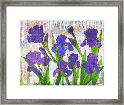 Irresistible Irises Framed Print