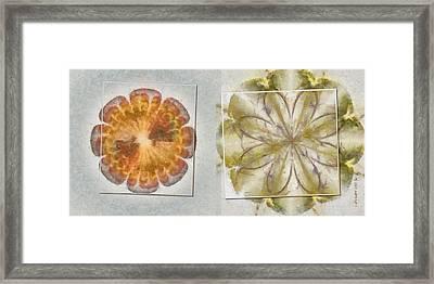 Irresolvable Layout Flower  Id 16165-030803-46101 Framed Print by S Lurk