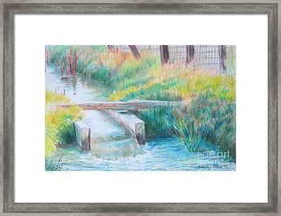 Irrigation Ditch Framed Print by Jeanette Skeem
