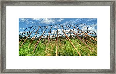Irrigation Pipes 1 Framed Print by Jerry Sodorff
