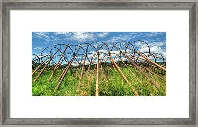 Irrigation Pipes 1 Framed Print