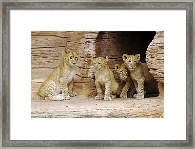 Is It Still There Framed Print by Keith Lovejoy