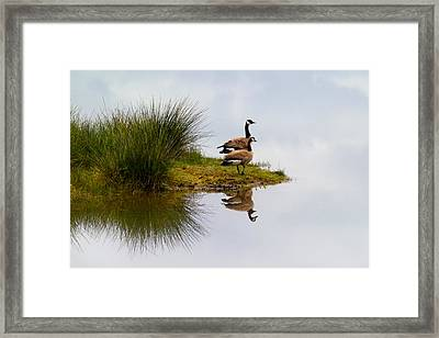 Is This Heaven Framed Print by Randall Ingalls