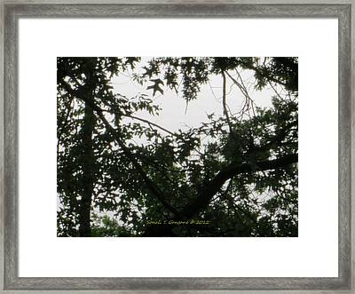 Is This My Heart? Framed Print