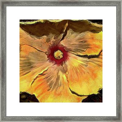 Framed Print featuring the mixed media Isabella by Trish Tritz