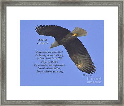 Isaiah 40 V 30 And 31 Framed Print by Debby Pueschel
