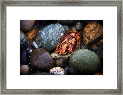 Isakro One Framed Print by Julius Reque