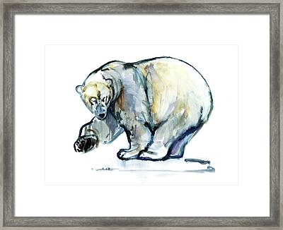 Isbjorn Framed Print by Mark Adlington