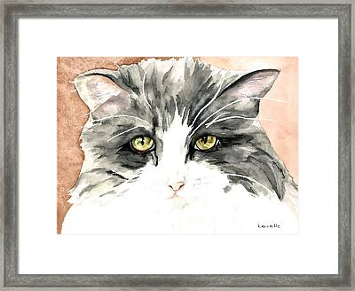 Ish Da Framed Print by Kimberly Lavelle