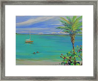 Islamorada Snorkeling Framed Print by Anne Marie Brown