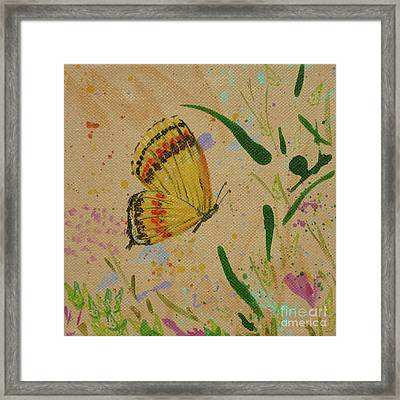 Island Butterfly Series 1 Of 6 Framed Print by Gail Kent