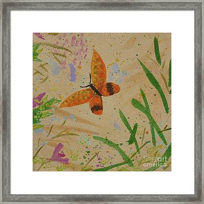 Island Butterfly Series 3 Of 6 Framed Print by Gail Kent