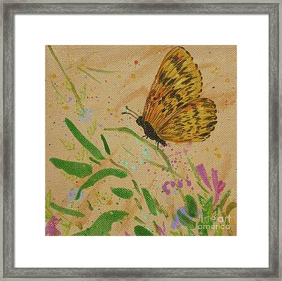 Island Butterfly Series 4 Of 6 Framed Print by Gail Kent