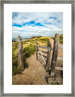 Island Gate Framed Print by Adrian Evans
