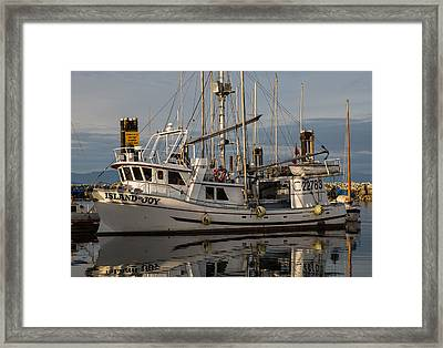 Island Joy Framed Print by Randy Hall