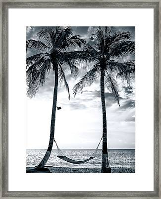 Island Nap Time At San Andres Island Framed Print by John Rizzuto