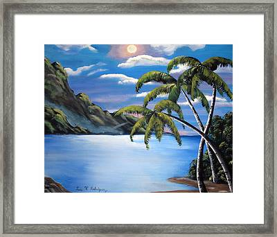 Island Night Glow Framed Print