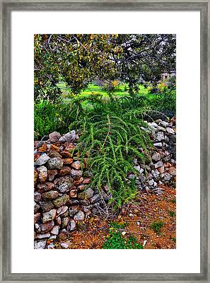 Island Of Love. Texture. Framed Print by Andy Za