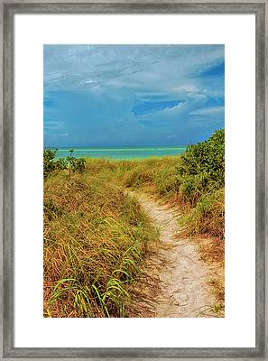 Island Path Framed Print