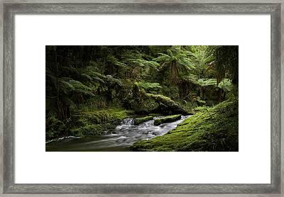 Islands Of Green 2 Framed Print by Peter Prue