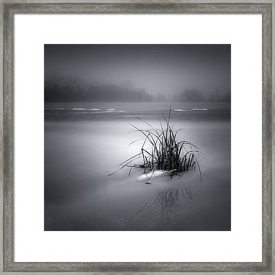 Islet Framed Print by Jaromir Hron