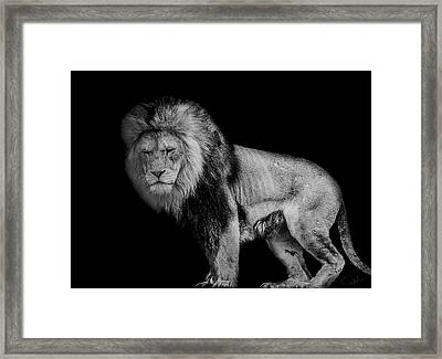 Isolated Framed Print by Paul Neville