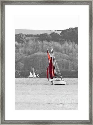 Isolated Yacht Carrick Roads Framed Print