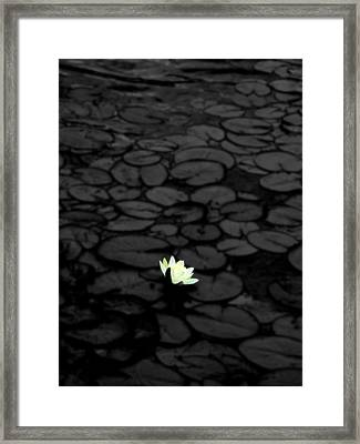 Selective Coloring Framed Print featuring the photograph Isolation by Roberto Alamino
