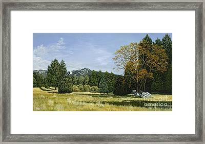 Isomata Meadow Framed Print
