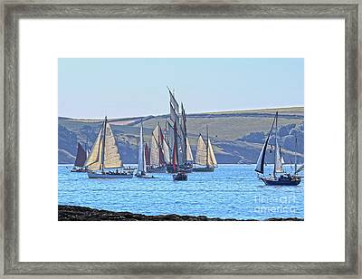 It Got A Bit Busy Framed Print by Terri Waters