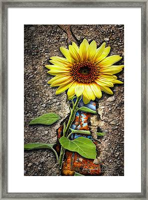 It Grew From Within Framed Print