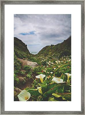 It Happened One Spring Framed Print by Laurie Search