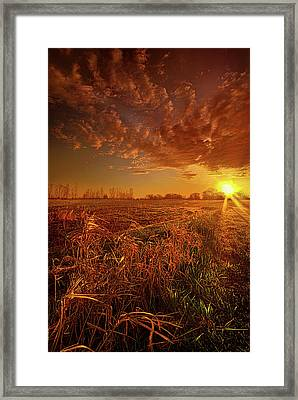 Framed Print featuring the photograph It Just Is by Phil Koch