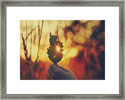 It Takes A Spark Framed Print by Kerry Langel