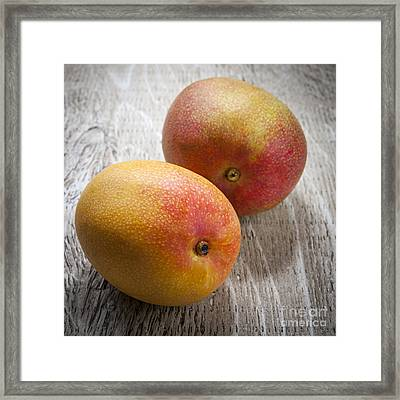 It Takes Two To Mango Framed Print by Elena Elisseeva