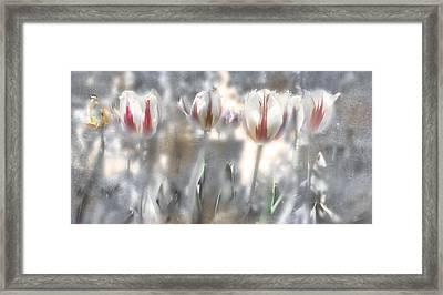 It Was A Beautiful Day Framed Print by Inesa Kayuta