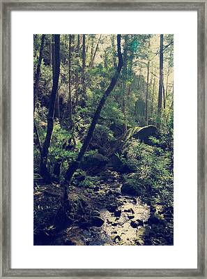 It Was Almost Like A Dream Framed Print by Laurie Search