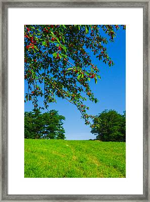 Italian Landscape Framed Print by Cesare Bargiggia