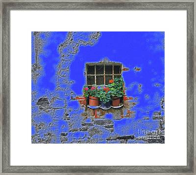 Italian Wallflowers Framed Print
