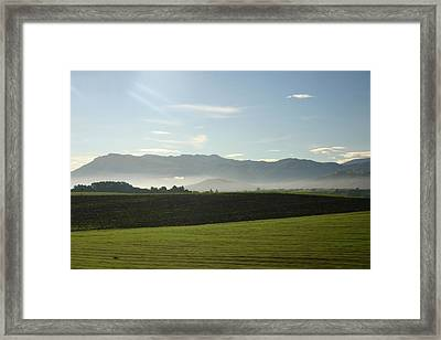 Italy's Country Side Framed Print by Dennis Curry