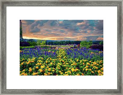 Ithaca College Ithaca New York Floral 03 Framed Print