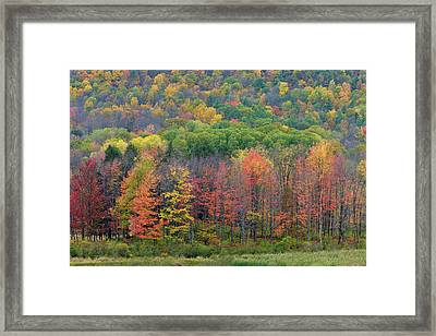 Ithaca Fall Colors Framed Print