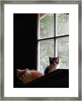 It's A Big Place Out There Framed Print by Ken Day