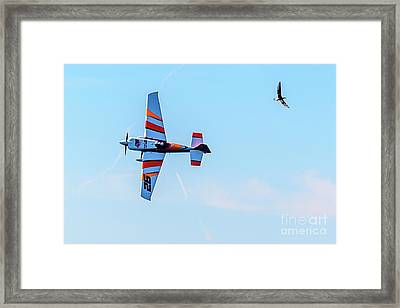It's A Bird And A Plane, Red Bull Air Show, Rovinj, Croatia Framed Print
