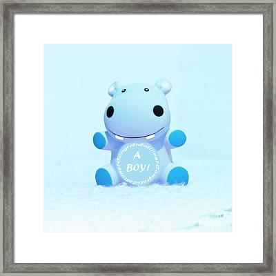It's A Boy Hippo Framed Print