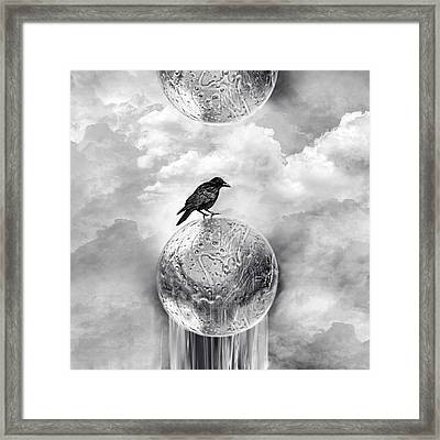 It's A Crow's World Framed Print