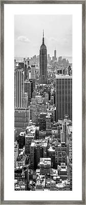 It's A Jungle Out There Framed Print