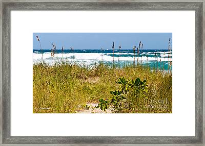 Its A Shore Bet Framed Print by Michelle Wiarda