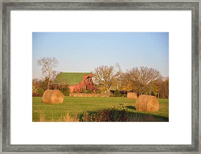 It's A Sunny Day Framed Print by Jan Amiss Photography