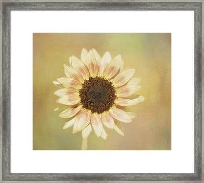 It's A Sunshine Day Framed Print